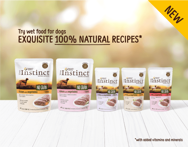 Try wet food for dogs EXQUISITE 100% NATURAL RECIPES *with added vitamins and minerals NEW